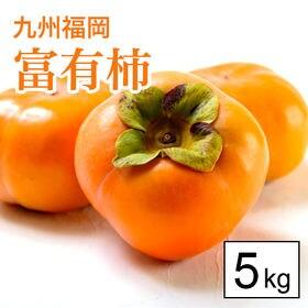 【5kg箱】甘柿の王様!名産地福岡より富有柿(16-20玉)