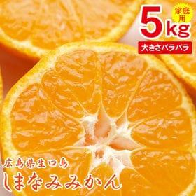 【予約受付】11/25~順次出荷【5kg】広島県生口島産 し...