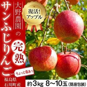 【予約受付】12/9~順次出荷【約3kg(8~10玉)】大野...