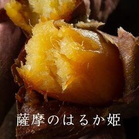 【1セット1kg】鹿児島県産 紅はるか(薩摩のはるか姫) 秀...