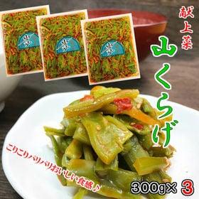 【300g×3袋】献上菜 山クラゲ