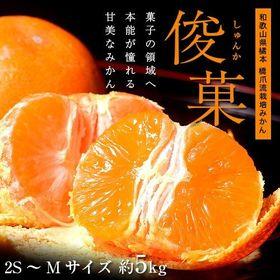 【5kg(2S~Mサイズ)】橋爪流栽培みかん 和歌山県産 俊...