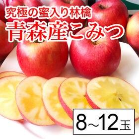 【予約受付】11/25から順次出荷【約150g×8-12玉】...
