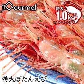 【1kg(500g×2パック入)】特大ボタンエビ(ぼたん海老...