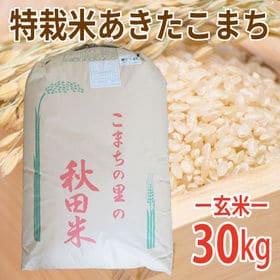 【30kg (30kg×1袋)】令和元年産 玄米 こだわり特...