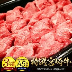 <500円OFFクーポン付>宮崎牛特選切り落とし肉 300g
