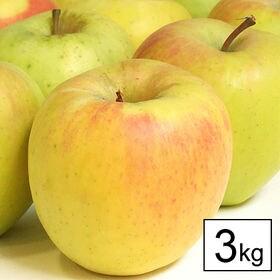 【予約受付】11/25~順次出荷【3kg】幻のグルメリンゴ「...