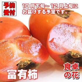 【予約受付】11/25~順次出荷【10kg】富有柿(和歌山・...