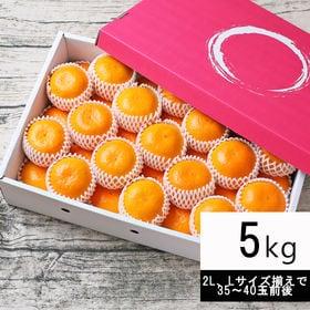 【5kg】特撰 吉田みかん(2L、Lサイズ揃えで35~40玉...