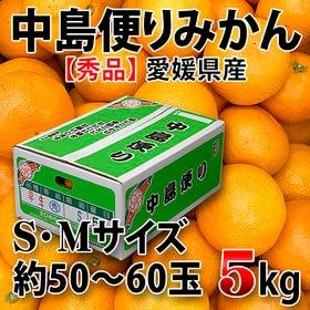 【約5kg(50~60玉)】愛媛県産 中島便りみかん 青秀(S・Mサイズ)