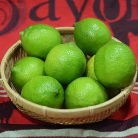 【1kg】優美農園のグリーンレモン