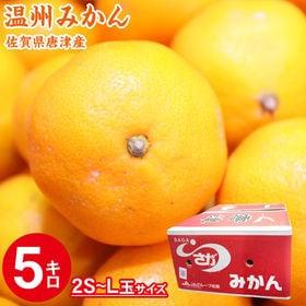 【5kg(2S-L玉)】佐賀県唐津産 温州みかん
