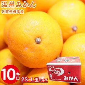 【10kg(2S-L玉)】佐賀県唐津産 温州みかん