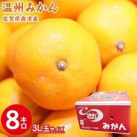【8kg(3玉)】佐賀県唐津産 温州みかん