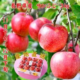 【3kg】長野県産 サンふじりんご