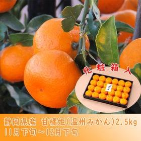 静岡県産 柑橘姫(温州みかん)約2.5kg
