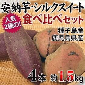 【4本(約1.5kg)】鹿児島・茨城県産 安納芋・シルクスイ...