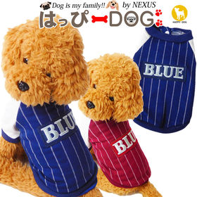 【ブルー/S】 シャツ ストライプ BLUE ドッグウェア