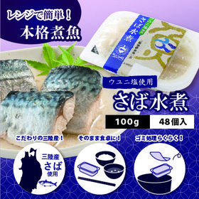 【計4800g(100g×48)】ウユニ塩使用 さば水煮