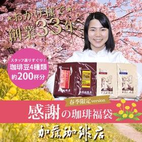 【計2kg(500g×4種)】感謝の珈琲飲み比べ 春季限定v...