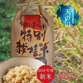玄米【10kg】無農薬特別栽培米「天の川」