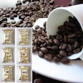 【計1.2kg】100gパックコーヒー 12袋セット(中挽き...
