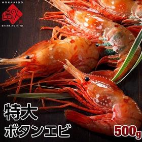【500g】特大プリプリ ボタンエビ (9-11尾)牡丹海老...