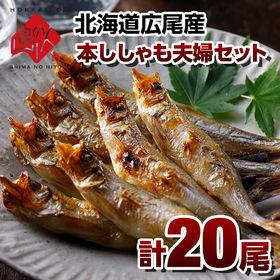 【計20尾】北海道 広尾産 本ししゃも 夫婦セット(各10尾...
