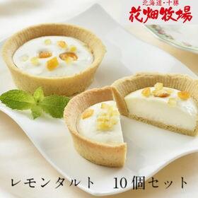 【10個セット】花畑牧場レモンタルト