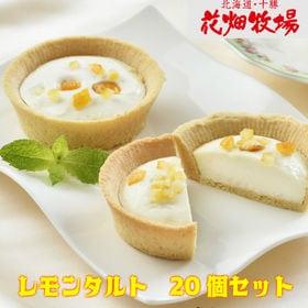 【20個セット】花畑牧場レモンタルト