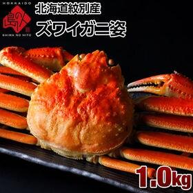 【1.0kg】北海道 紋別産 本ズワイガニ 姿