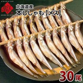 【30尾】北海道産 子持ち本ししゃも(メス)×30尾 魚