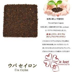 【ティーバッグ20個入】ウバ セイロン紅茶 便利なジップ付き...