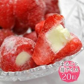 【20粒入り】まるごとアイス いちご 苺の芯をくり抜いて練乳...