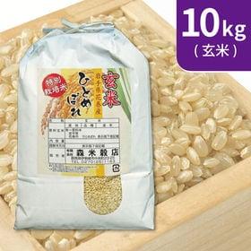 【10kg (5kg×2袋)】令和元年産 玄米 岩手県花巻産...