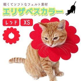 【レッド:XS】エリザベスカラーひまわり(5枚)