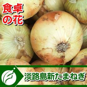 【10kg】淡路島新たまねぎ(M40玉前後ー2L25玉前後)