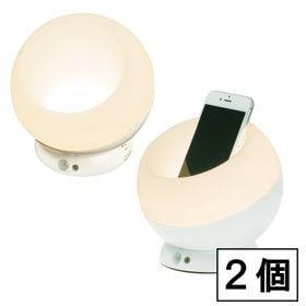 [2個セット]収納スペース付 LED人感センサーライト(発光...