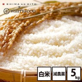 【5kg】北海道産 ななつぼし 白米 特Aランク お米