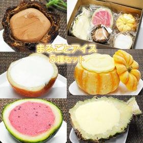 【5種類入り】まるごとアイス 5種セット アイス※かぼちゃ・...