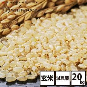 【20kg】北海道産 ななつぼし 玄米 特Aランク お米