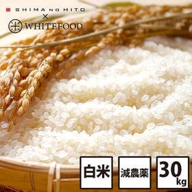 【30kg】北海道産 ななつぼし 白米 特Aランク お米