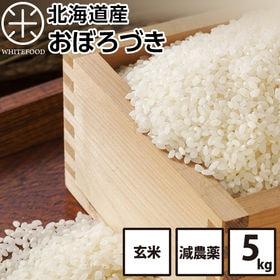 【5kg】北海道産 おぼろづき 玄米 減農薬米 お米