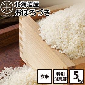【5kg】北海道産 おぼろづき 玄米 特別減農薬米CL お米