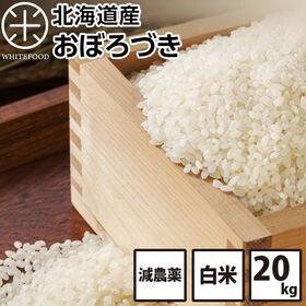 【20kg】北海道産 おぼろづき 白米 減農薬米 お米