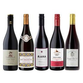 【5本セット】赤ワイン品種の女王 「ピノノワール」 飲み比べ...