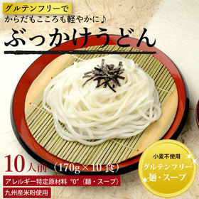 美人麺(ぶっかけうどん)10食セット