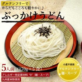 美人麺(ぶっかけうどん)5食セット