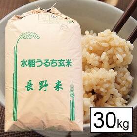 【30kg】 令和元年産長野県南信(上伊那)産コシヒカリ 1...