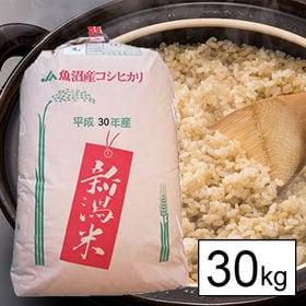 【30kg】 JA十日町 令和元年産 新潟県十日町魚沼産コシ...